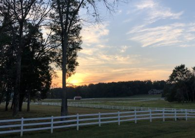 Sunset on horse farm.