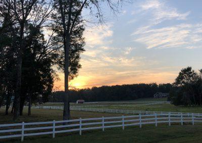 Sunset on horse farm.